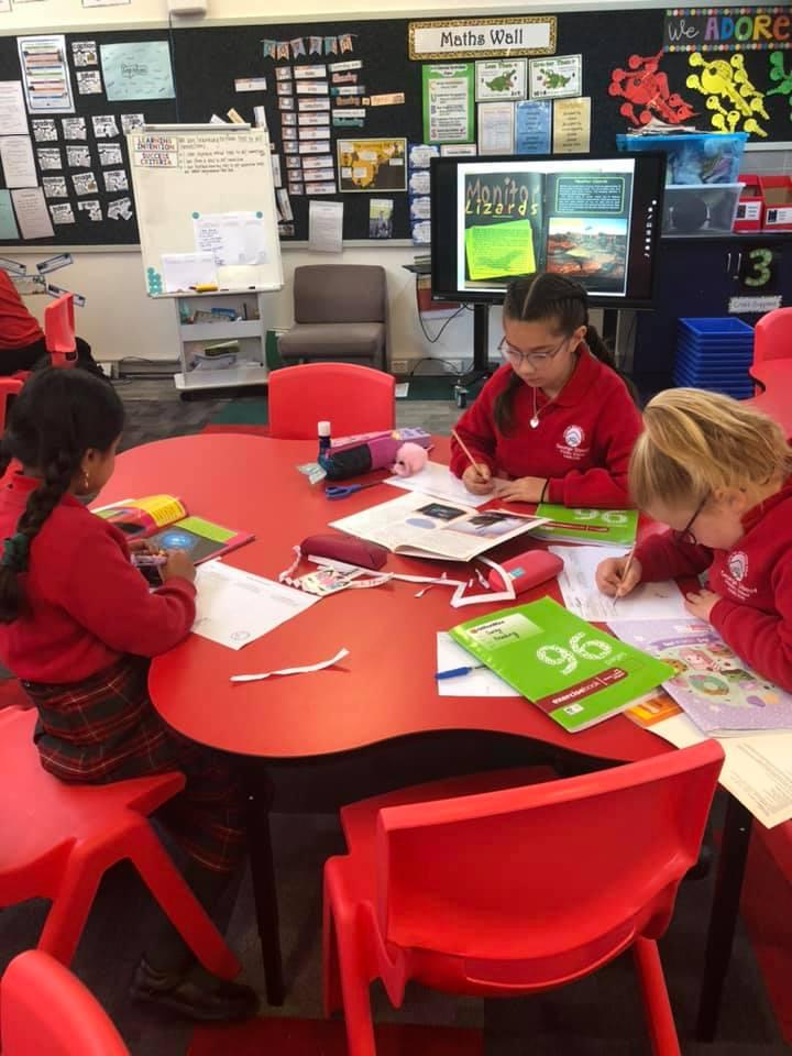 Grade 4 Researching